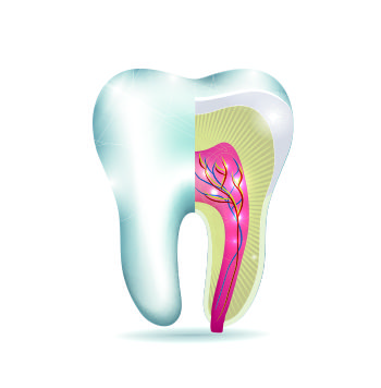 Do genetics play a role in cavity development?